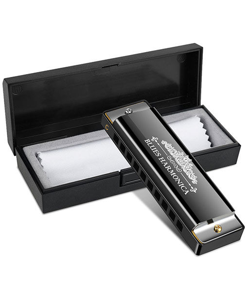 Anpro Harmonicas in Key of C Blues 10 Holes 20 Tones for Beginners, Students Children, Professional